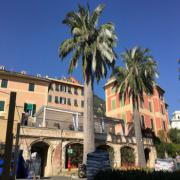 Euroflora 2018 ai Parchi di Nervi - Genova